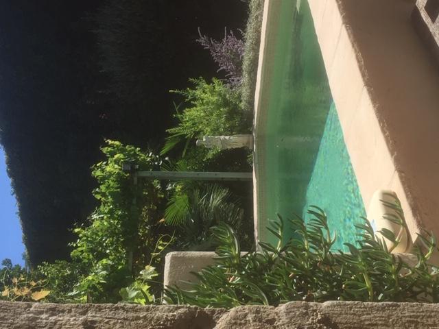 O Palmier Caché - Chambre hôtes à Saint-Marcel-sur-Aude